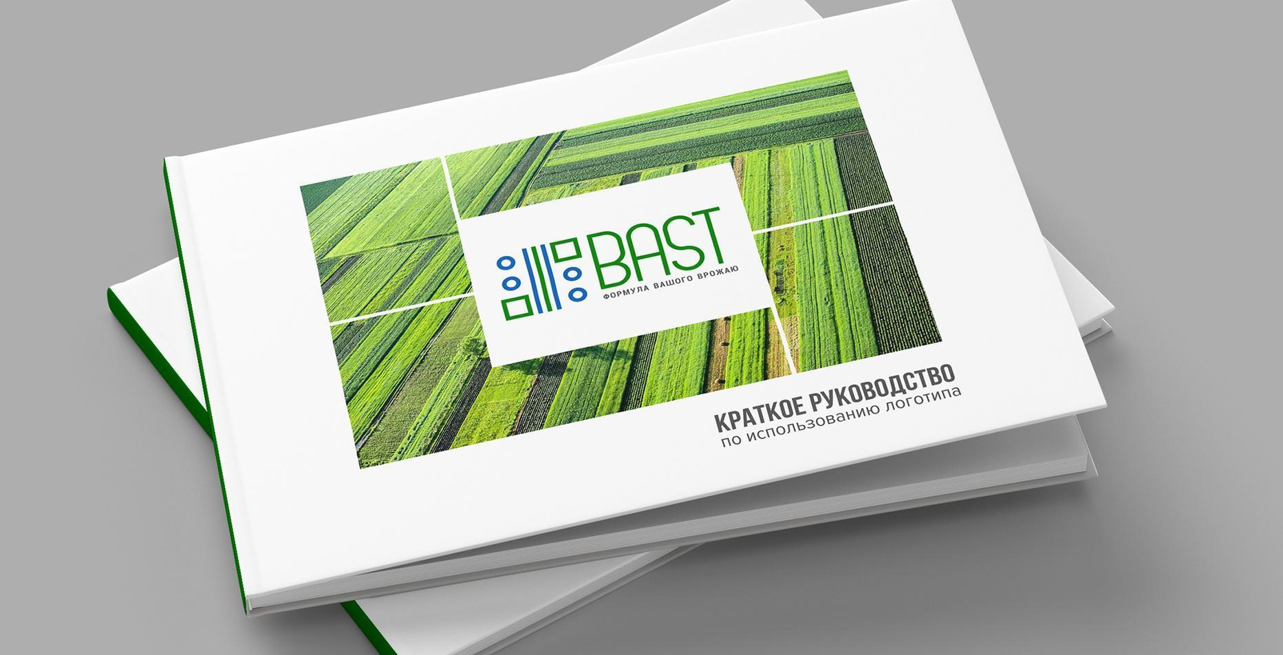 Case: website development, logo, video and branding for Bast — Rubarb - Image - 5